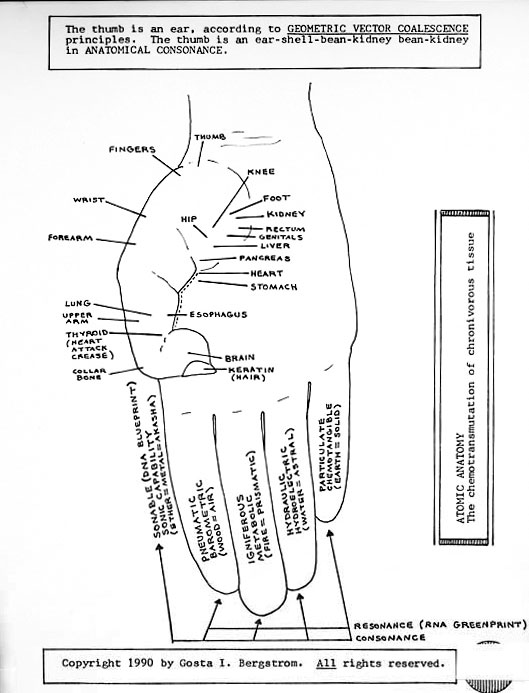 thumb ear body chart